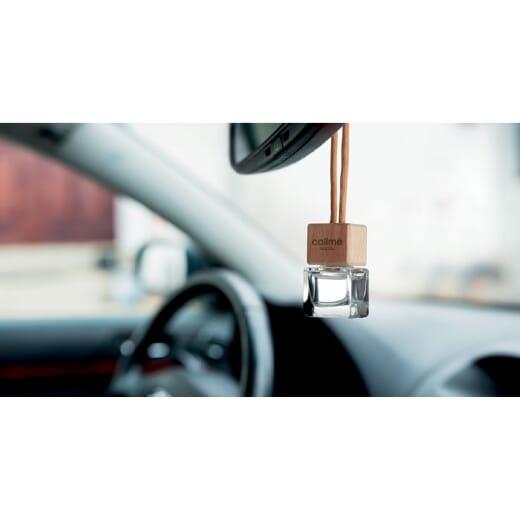 Deodorante auto FRESH AIR - 1