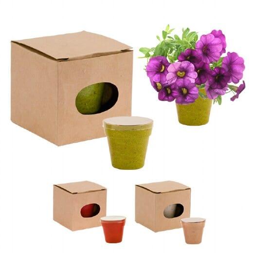 Vaso di fiori Petunia