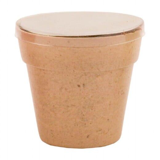 Vaso di fiori Petunia - 1