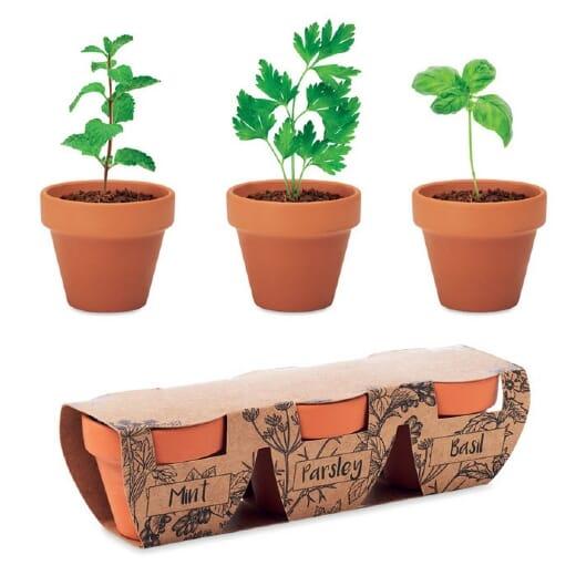 Set 3 vasi in terracotta FLOWERPOT - 1