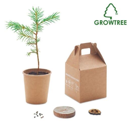 Set in legno di pino GROWTREE KIT - 1